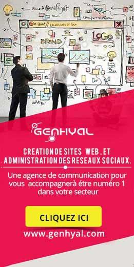 Agence web Algérie, création de site web, hébergement et formation web.